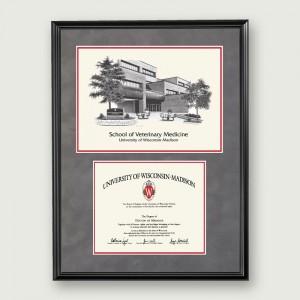 Wisc-Vet-Artistic-Diploma–Black